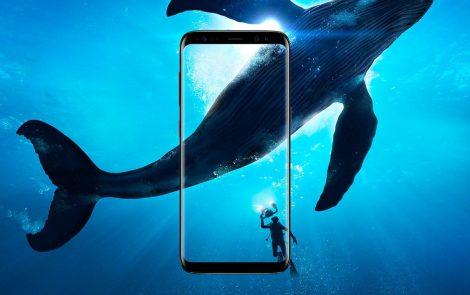 Dla Samsunga Sony jest groźniejsze niż LG i HTC?
